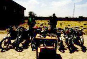Un époux de 3 femmes avec18 enfants membre d'un gang