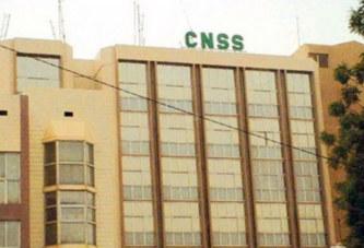 Annulation recrutement à la CNSS: Les 84 agents obtiennent encore gain de cause devant le Conseil d'Etat