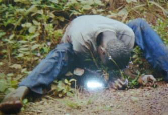 Côte d'Ivoire: Un planteur assassine son compatriote