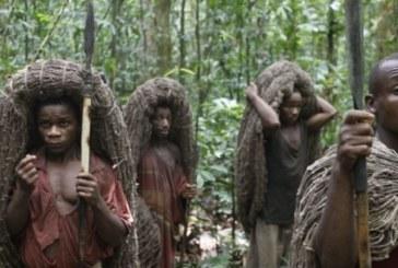 RDC: Des affrontements entre Bantous et Pygmées font huit morts