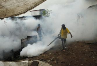 Après des décennies de lutte, le Sri-Lanka a vaincu le paludisme