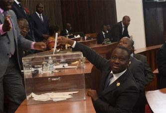 Côte d'Ivoire : l'Assemblée adopte le projet de nouvelle constitution