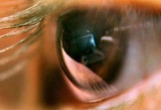 Voici comment protéger vos yeux si vous passez plus de 4 heures devant l'écran
