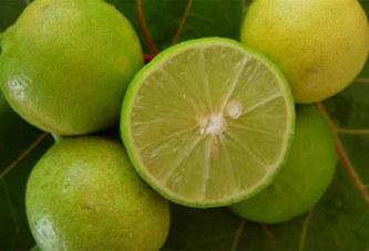 Le citron soigne les articulations: Découvrez comment