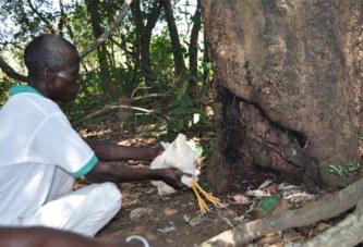 Côte d'Ivoire – Grabo: des présumés sorciers ligotés et enterrés vivants