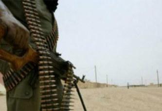 Le nord du Mali doit-il s'appeler officiellement Azawad ?
