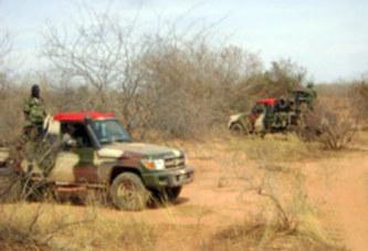Mali: Une dizaine de soldats tués dans une ambuscade