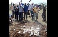 Somalie: Un homme lapidé à mort par des militants islamistes pour avoir trompé ses deux épouses