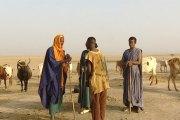 Mopti : Affrontement entre Dogon et Peuhl, au moins 80 morts