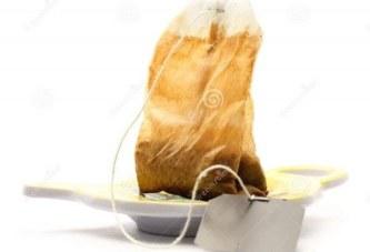 Marre des souris et autres incestes dans la maison, utilisez cette astuce facile à base de thé