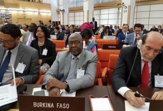 Union africaine:  Le Burkina Faso prend les rênes du comité technique spécialisé sur l'agriculture