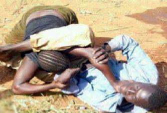 Différend conjugal: Elle mord les parties intimes de son mari jusqu'à sang