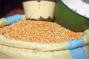Produits de grande consommation : de nouveaux prix-plafonds pour éviter l'inflation suite au déficit céréalier