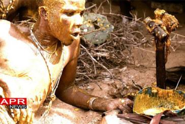 Bénin : Le vaudoun utilisé pour protéger l'écosystème