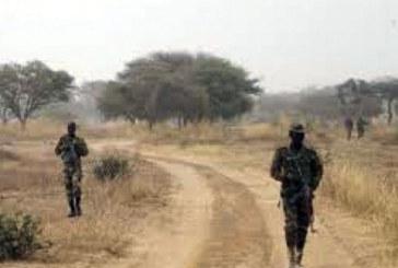 Niger: Un humanitaire allemand kidnappé par des hommes armés près d'Ayorou