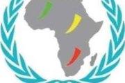 Sommet Panafricain de la jeunesse au Burkina: Le ROJALNU- ODD Burkina s'en démarque