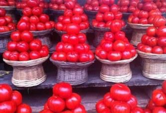 Comment les tomates du Burkina Faso sont devenues les préférées du Ghana