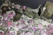 Inde : Des rongeurs grignotent plus d'un million de roupies dans un distributeur de billets