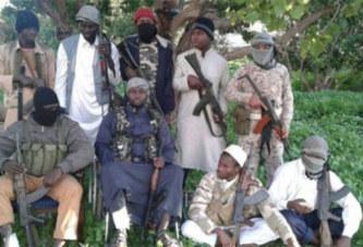 Insécurité: plus de 10 000 jihadistes présents en Afrique