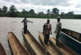 Côte d'Ivoire/ Un couple d'hippopotames sème la terreur à Grand-Lahou