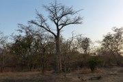 Burkina : Nouvelle attaque à Pama, le campement présidentiel en feu