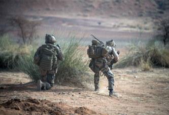 Sahel : où en est l'opération Barkhane ?