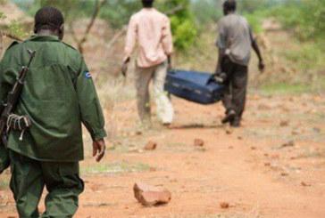 Tchad : combats entre rebelles tchadiens et soudanais sur le site aurifère de Kouri Bougoudi