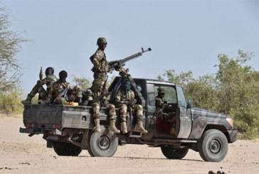 Niger: reddition de plusieurs rebelles de retour du sud-libyen