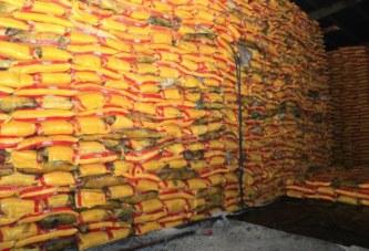Scandale du riz avarié à Abidjan: La Côte d'Ivoire face à un nouveau » Probo koala» qui compromet les autorités Ivoiriennes