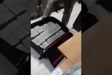 Soudan : 113 millions de dollars en liquide retrouvés au domicile d'Omar El Béchir