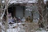 Japon : des poupées installées dans un village pour lutter contre la solitude