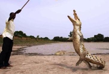 Voyage dans la Culture, les lieux emblématiques du Burkina Faso…