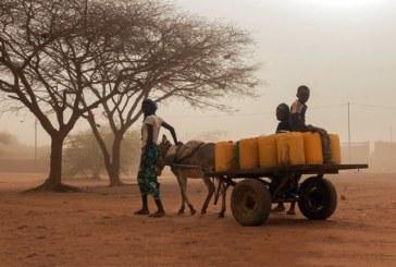 Burkina Faso: L'insécurité affectera négativement les activités agricoles dans le nord du pays