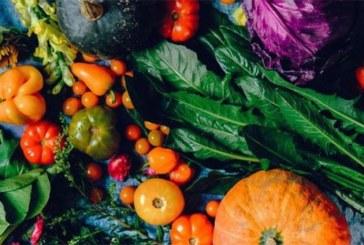 Santé: 5 aliments à consommer sans modération pour votre bien-être