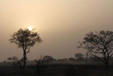 Bénin : une clôture électrifiée autour du parc de la Pendjari contre le terrorisme ?