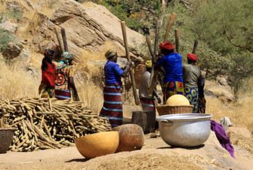 Une culture derrière nous, la culture Dogon