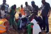 Ouahigouya (nord): une opération de reboisement organisée par le MPP en la mémoire du défunt président de l'Assemblée nationale Salifou Diallo