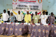 Burkina Faso: La 67e session ordinaire du BPN duCDPreportée au samedi 29 février 2020