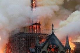 Comment le bois du Ghana pourrait reconstruire Notre-Dame de Paris?