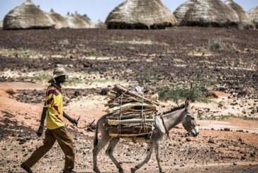 Niger: les jihadistes ciblent les chefs de villages