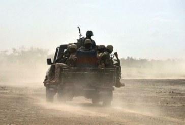 Plus de cent anciens »jihadistes» déradicalisés au Niger