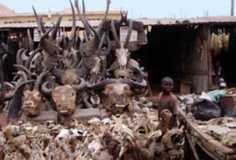 Cameroun : Une affaire de sorcellerie secoue la ville de Lagdo