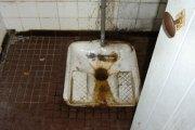 Burkina Faso : Une fille de 12 ans retrouvée morte et écervelée dans un WC