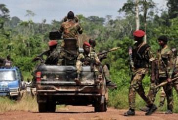 TRAFIC D'ARMES:   Un faiseur de paix impliqué
