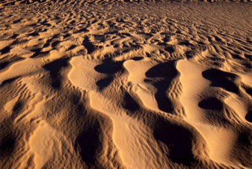 92 morts de soif dans le désert: Surtout des femmes et des enfants