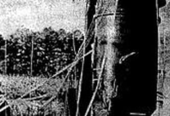 Une bombe atomique a failli faire sauter New York en 1961: Les documents déclassifiés