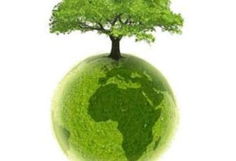 Actu vert ! Bois sacrés : quand la tradition sauve l'environnement