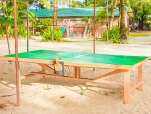石川久美の卓球