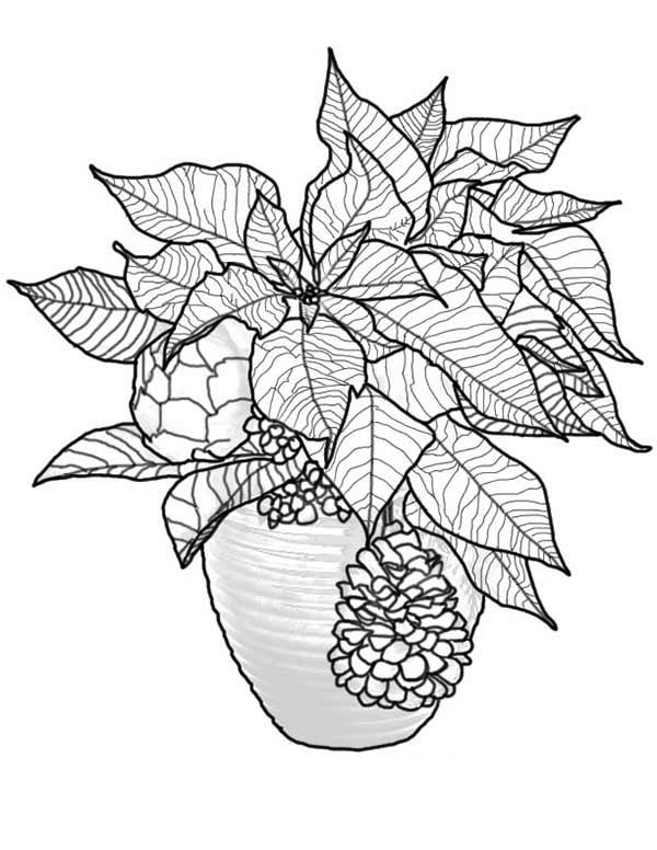 poinsettia bouquet for national poinsettia day coloring