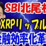 【SBI北尾社長】XRPリップル活用金融効率化革命!【仮想通貨】